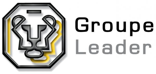 logo-leader-interim